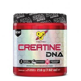 Creatine DNA