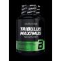 BioTech USA - Tribulus Maximus 90 comprimés